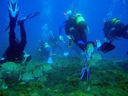 Buceo en Gran Canaria