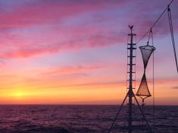 Campañas científicas de evaluación pesquera