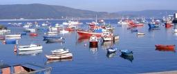 Reservas marinas, pesca y evolución