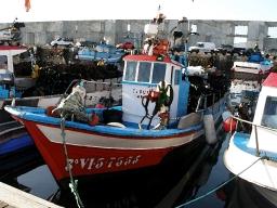 Galicia artesanal… y su gestión pesquera