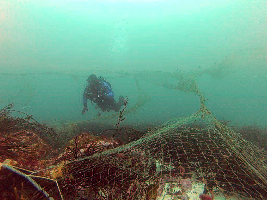 Buzo inspeccionando en el fondo una red abandonada (foto: PESCAL, BEC)