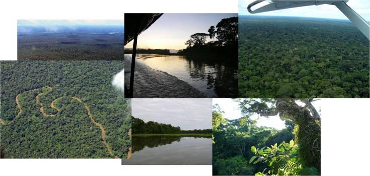 Hábitat y vistas del parque nacional de Manu (fotos: G. Mucientes / BEC)
