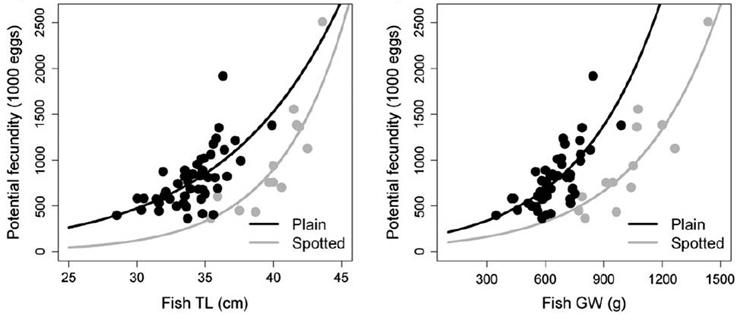 Curvas de fecundidad por talla y peso para pinto/maragota (Villegas-Ríos et al. 2014)