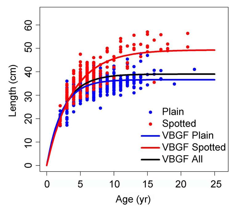 Curvas de crecimiento de Von Bertalanffy (VBGF)